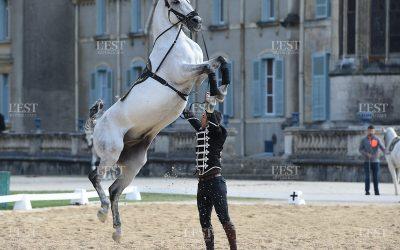 Temps fort : La Grandeur des Arts Equestres Est Républicain du 23 septembre 2017