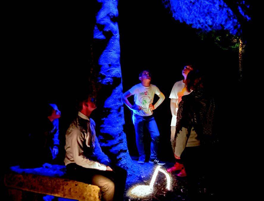 51 photos en ligne de La Balade Merveilleuse à Thillombois