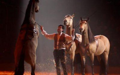 les 20, 21 et 22 septembre 2019 La Cie Hasta Luego et Lorenzo associeront leurs arts équestres