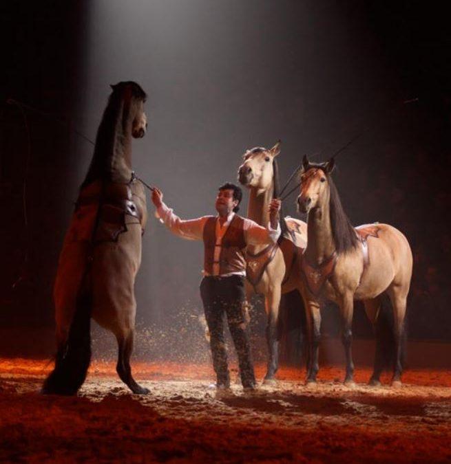 les 20, 21 et 22 septembre 2019 Christophe Hasta Luego et Cie ainsi que Lorenzo associeront leurs arts équestres
