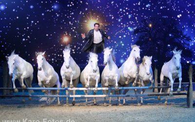 Vidéo  de Lorenzo debout sur ses chevaux lancés au galop..  Spectacle à couper le souffle !