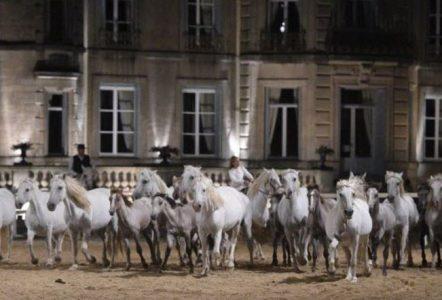 Meuse : la première soirée du spectacle de la 4e biennale équestre de Thillombois