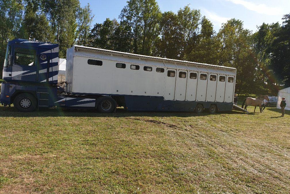 Les chevaux sont arrivés ce mercredi après-midi au château de Thilllombois. Il leur faudra environ vingt-quatre heures d'acclimatation pour être au mieux de leur forme pour les spectacles de cette fin de semaine.