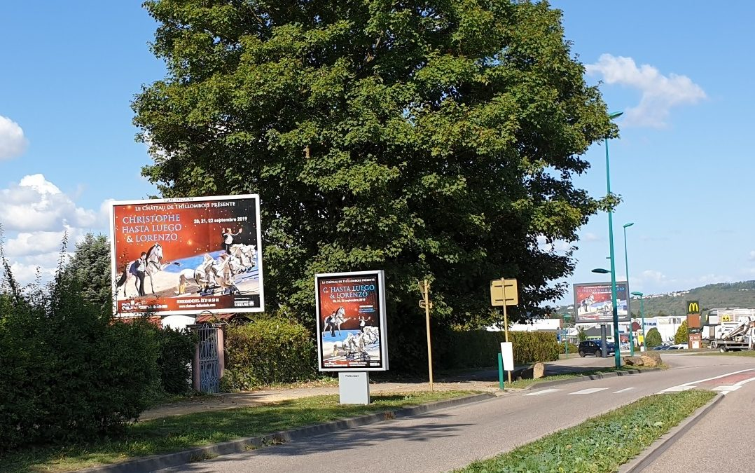 vu sur l'avenue de Metz à Verdun (55)
