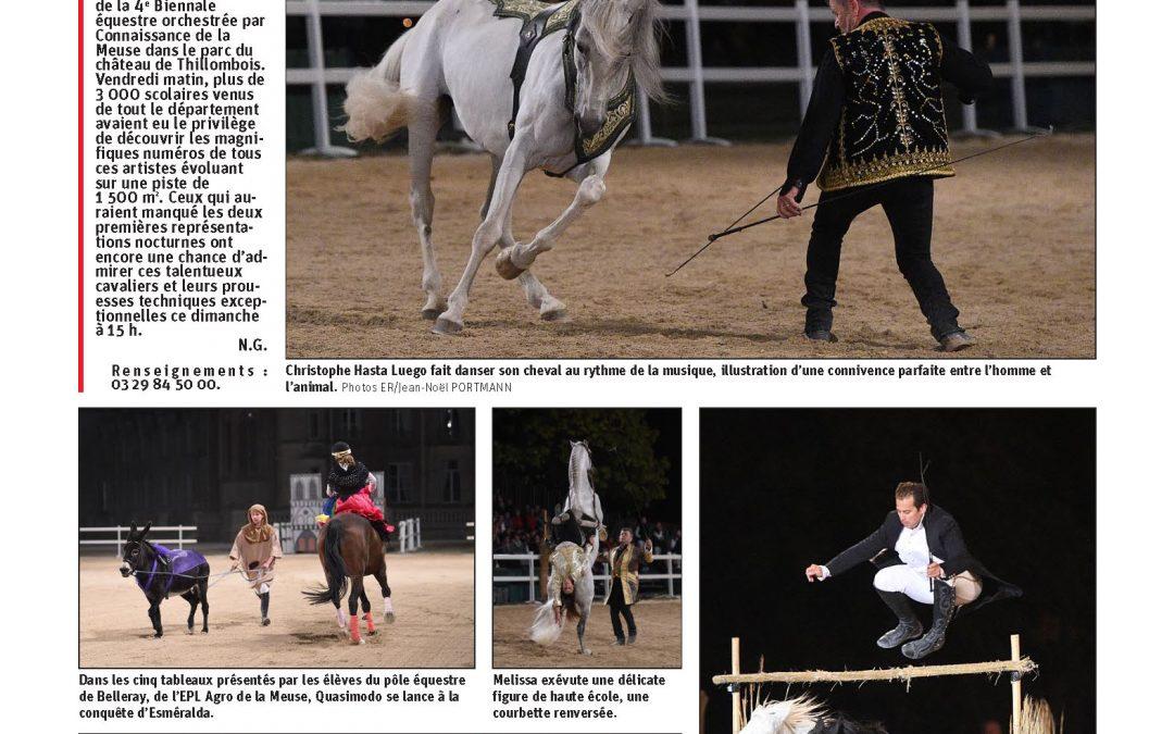 Hasta Luego et Lorenzo font danser les chevaux