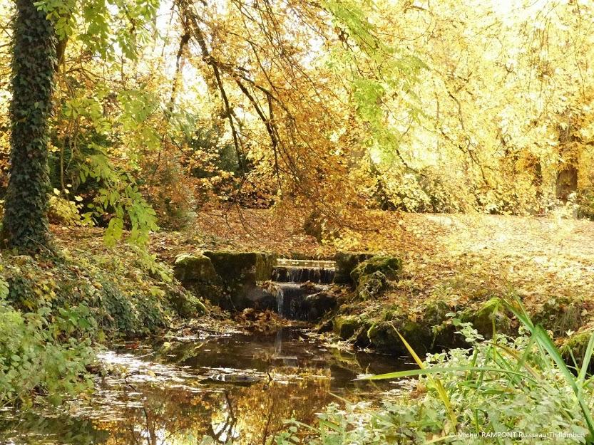 Le ruisseau de Thillombois